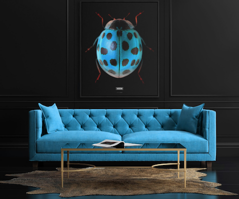 Collezione The Beetles Wonderbold® design di Emanuele Pangrazi