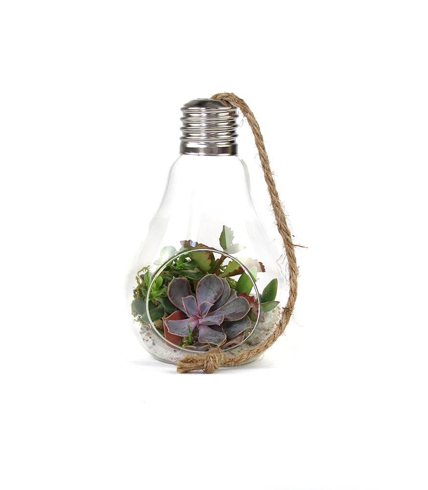 FLOB, composizione in una lampadine